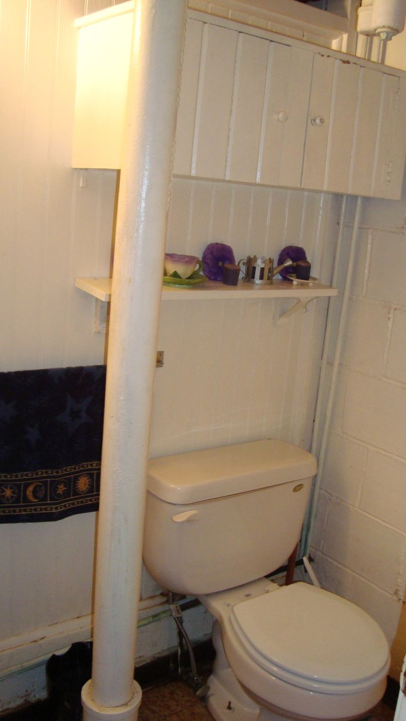 Before_shelf_toilet