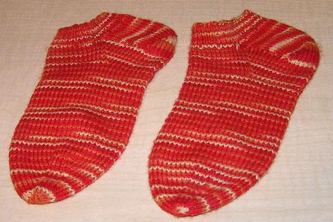 Sock Garden Crew Socks